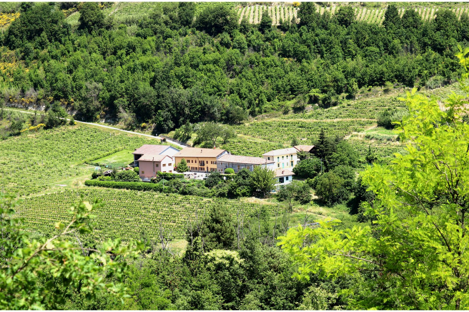 Casa Re, Piemonte - von Natur umgeben | surrounded by nature | circondato dalla natura